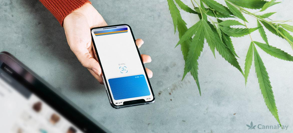 CPS - Does PayPal Accept Cannabis? Answered